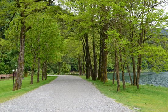 Harrison Hot Springs Resort & Spa: Path to spring source