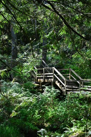 Harrison Hot Springs Resort & Spa : Trails around property