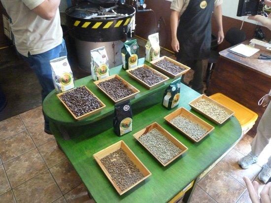 Doka Estate Coffee Tour: coffee