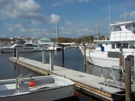 Key Largo Fisheries Backyard: Picturesque View