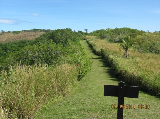 Sigatoka Sand Dunes National Park : part of the trail