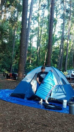 Jekyll Island Campground: Our Site T15