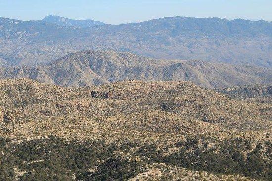 Tucson Mountain Park : Mountain view