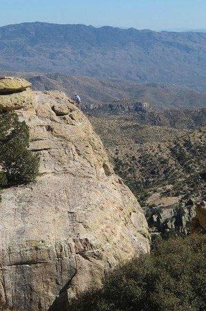 Tucson Mountain Park: Mountain climber