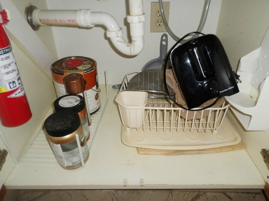 St. Clements Suites : Chemicals under the sink near the dishes and etc
