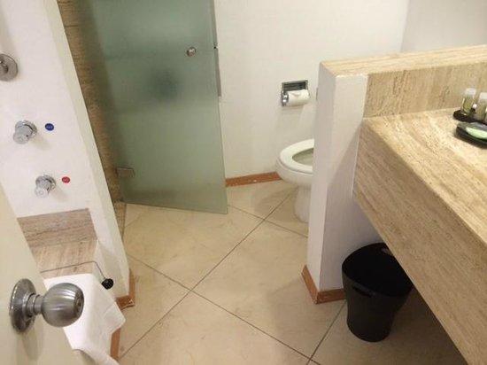 The Westin Resort & Spa, Cancun: bathroom