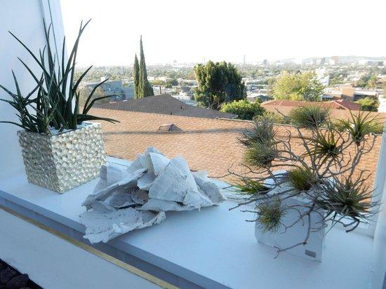 Mondrian Los Angeles Hotel : vista da piscina