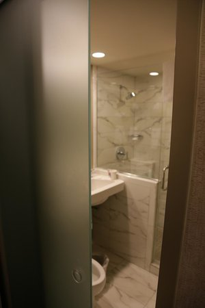 Holiday Inn Express Denver Downtown: Glass door on bathroom