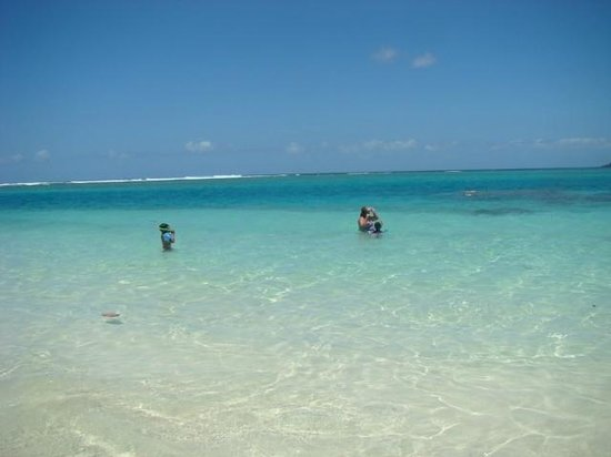 Villa Flamenco Beach : beautiul