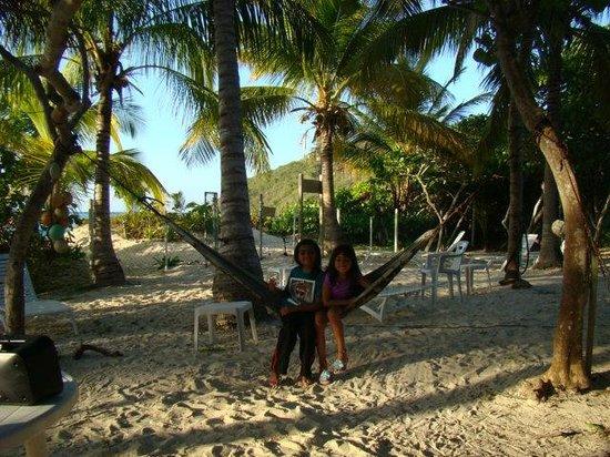 Villa Flamenco Beach : area
