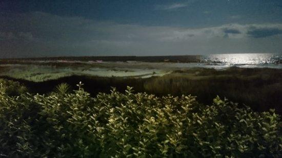 Ocean Isle Inn: Ocean Isle at night