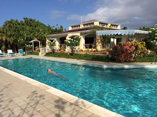 The Mount Nevis Hotel: Pool and patio