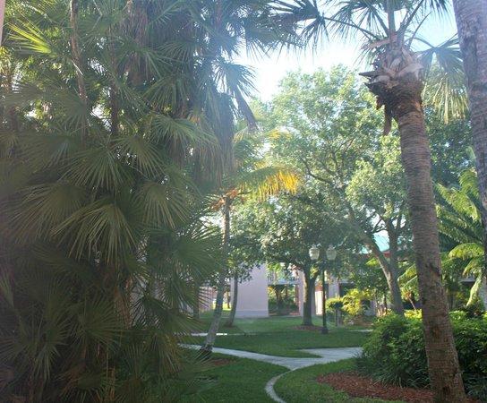 Radisson Resort at the Port: Very pretty grounds