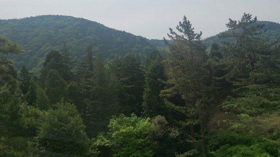 Hakone Hotel Kowakien: Vista do restaurante do café da manhã