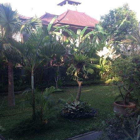 Tanah Semujan Ubud : garden
