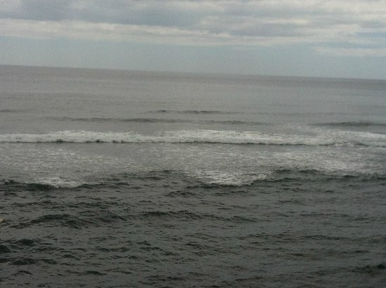 Adrian Tropical: the sea view