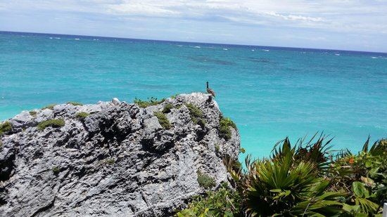 Bel Air Collection Xpu Ha Riviera Maya: tulum
