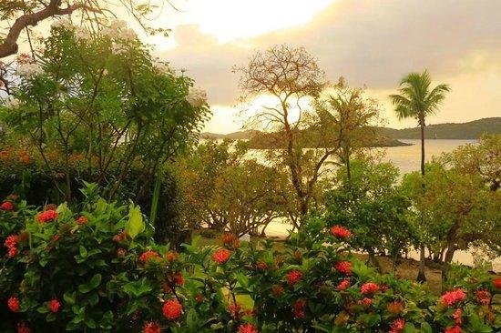 Caneel Bay Resort : beach view