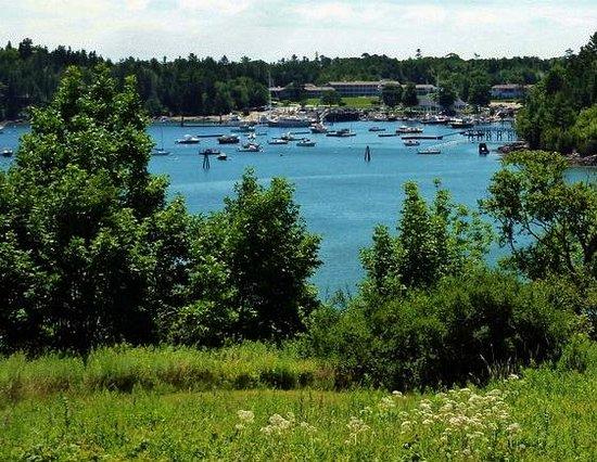 Harbourside Drive: NE Harbor for Asticou Lodge