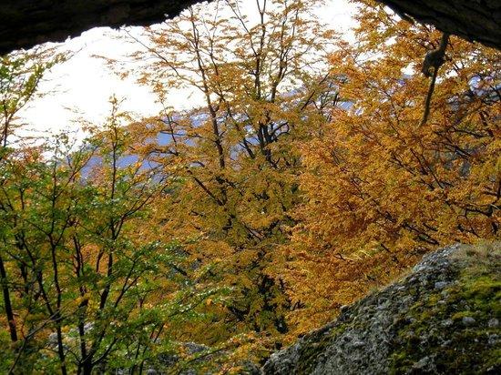 Cueva del Milodón: cueva