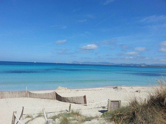 Strand Playa de ses Illetes: Maggio il mese migliore