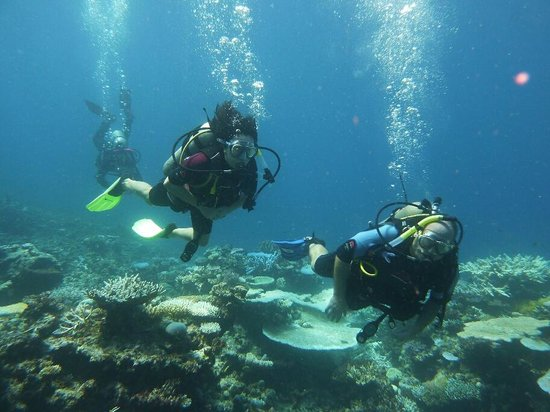 Qamea Resort And Spa Fiji : great diving for all levels