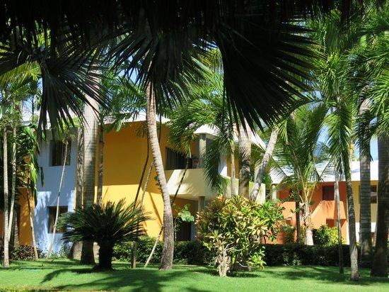 Iberostar Bavaro Suites: Vista externa dos apartamentos (suite junior)
