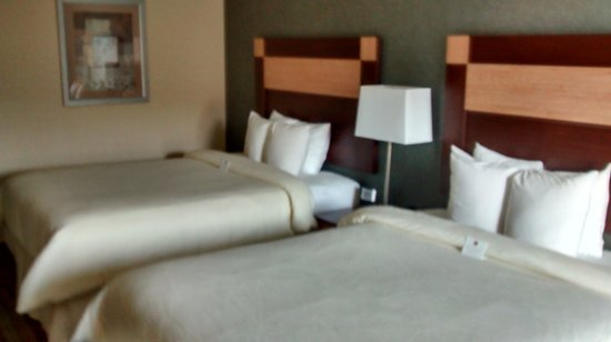 Clarion Inn Dollywood Area: Another view of the beds.