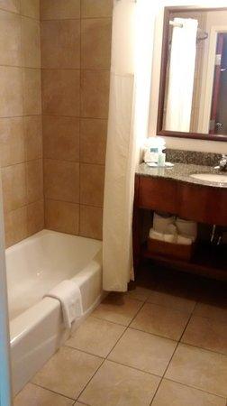 Clarion Inn Dollywood Area : Bathroom.