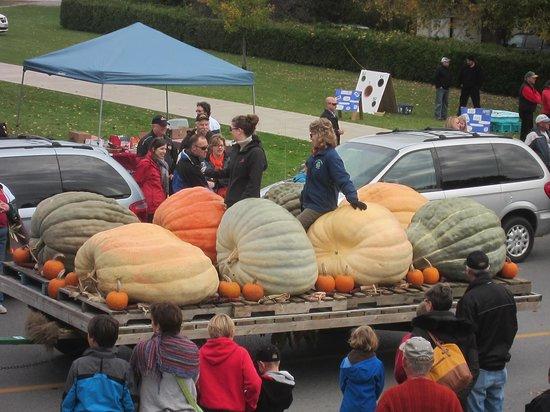 Prince Edward County, Canadá: Pumpkin Fest in Wellington