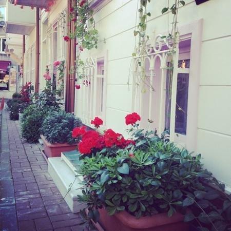 Hotel Darussaade Istanbul : otelin dışı
