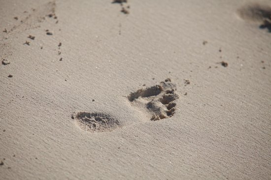 My Own Water Sports: Come and leave your footprint in the sand