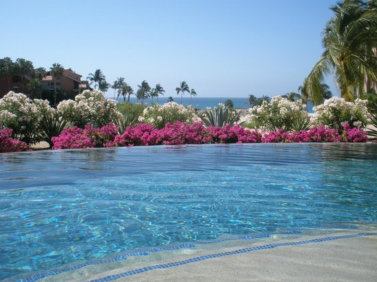 Casa del Mar Golf Resort & Spa: Infinite pool near room