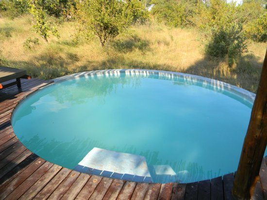 Africa on Foot Camp : the elevated pool