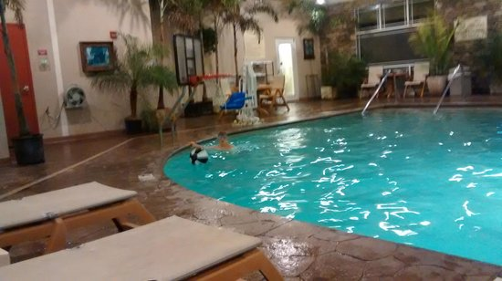Clarion Inn Dollywood Area: Indoor pool.
