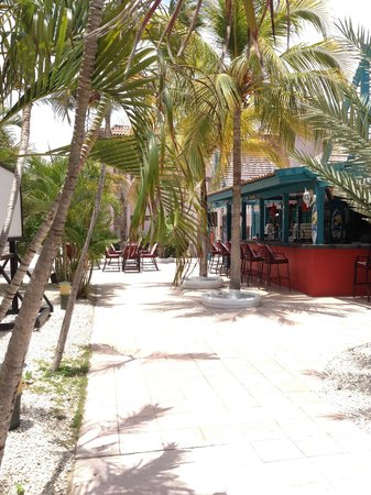 Caribbean Palm Village Resort: bar and pool area