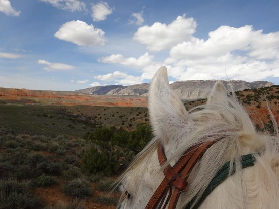 The Hideout Lodge & Guest Ranch: Best seat in the house!