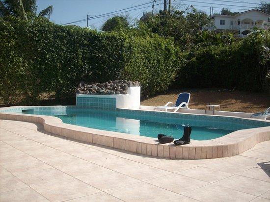 Blue Skies Apartments: Pool Area