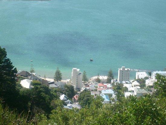 Mount Victoria: view