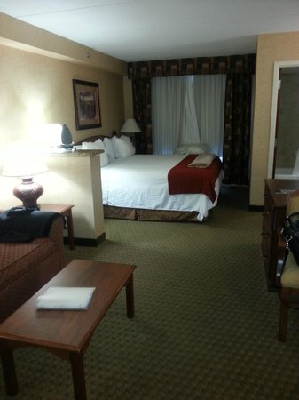 Holiday Inn Express Hotel & Suites Tempe: room