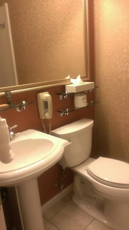 Millwood Inn & Suites: The bathroom.