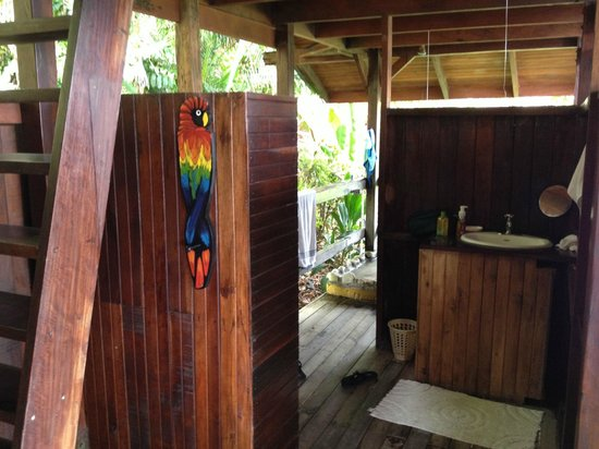 Lookout Inn Lodge: Monkey House - looking into bathroom and shower