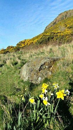 Holyrood Park : Springtime Hike