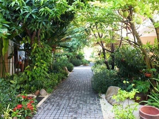 Villa Aria Muine: Garden