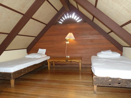 Hidden Valley Springs Resort: loft with 2 single beds