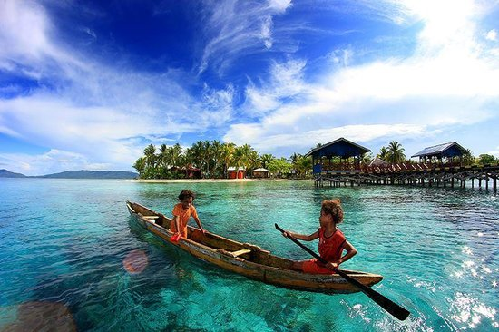 Image result for arborek raja ampat