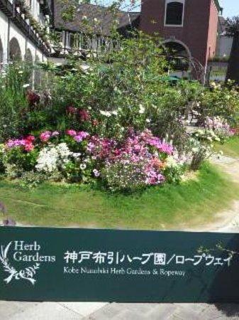 Kobe Nunobiki Herb Garden: ハーブ園