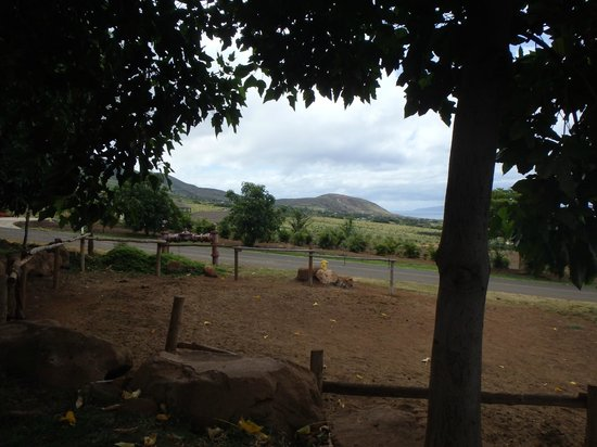 View from Lahaina Stables.