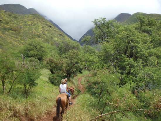 Lahaina Stables: Getting to Olowalu Ditch.