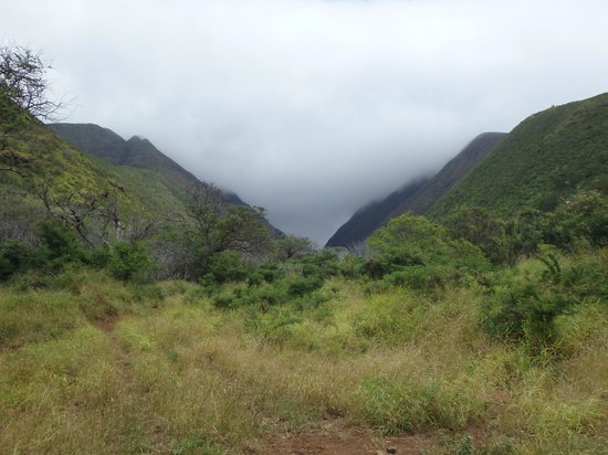 Lahaina Stables: Olowalu Ditch.